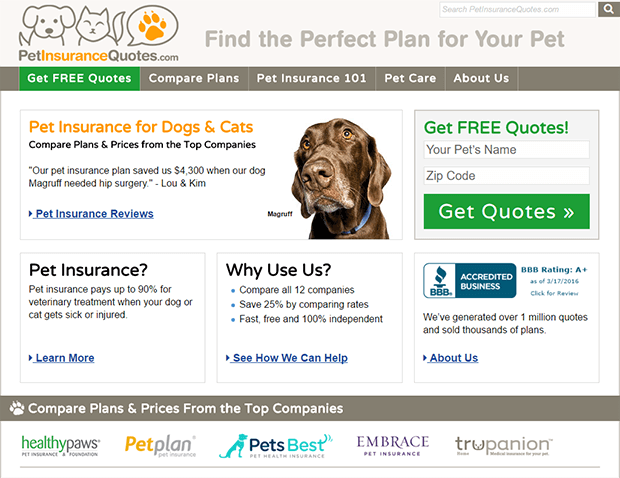 Petinsurancequotes Protects Your Pet S Health And Your Bank Balance